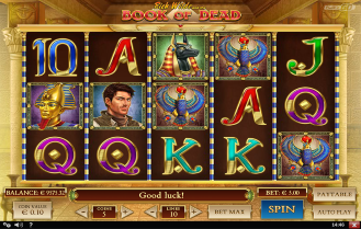Wildz Casino Screenshot Book of Dead